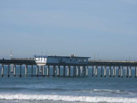 Visit ocean beach san diego cozy beach and pier in ocean for Pier fishing san diego