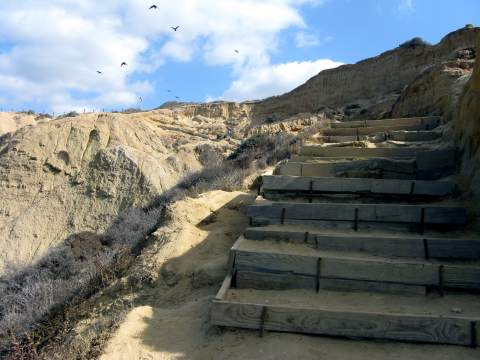 Blacks Beach California Torrey Pines Trail Steep Path