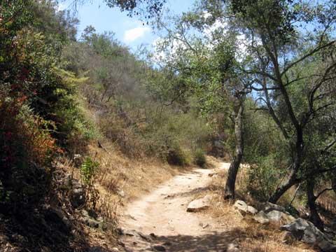 San Diego Hiking Trail - Way Up Trail