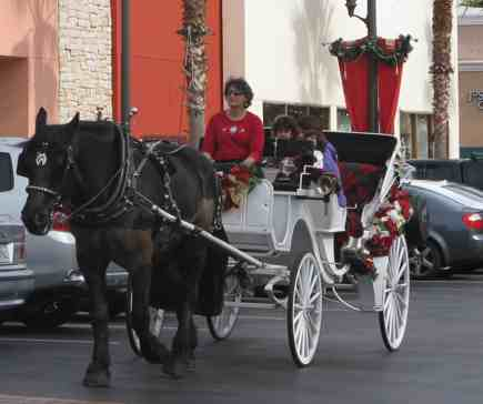Free Christmas Activities Ride in Horse Drawn Carriage at the Forum Carlsbad San Diego Cal