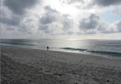 Marine Street Beach