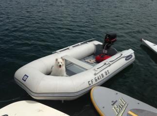 Mission Bay Park Boat Rentals