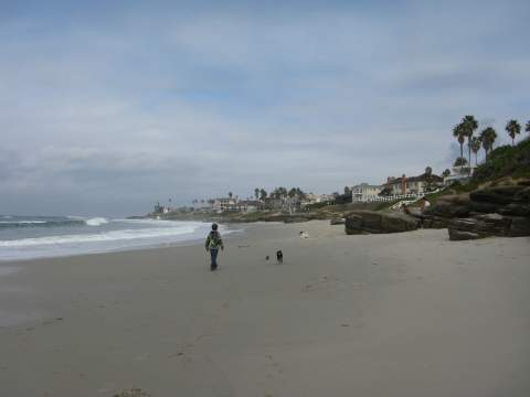 Windnsea Beach San Diego