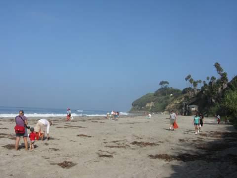 Coastal Clean Up Day