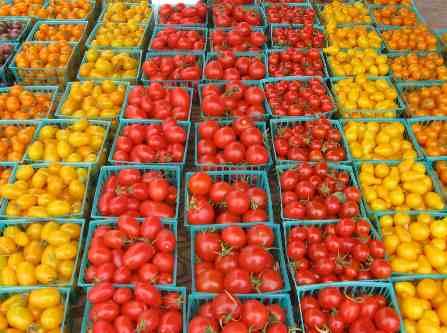 San Diego Farmers Market